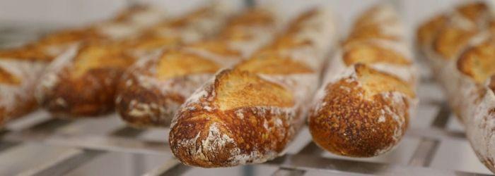 3 hornos para producción de pan industrial que debes conocer - Europan