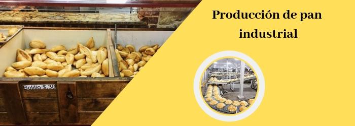 Proceso de producción de pan industrial - Europan