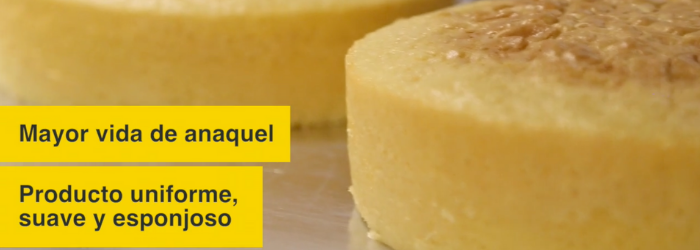 El mejor horno para pastelería - Europan